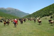Discover the local culture and terrain with the Grand Albania Hiking Tour